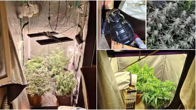 Kod pulskog dilera pronašli tri laboratorija za uzgoj trave, ručnu bombu, metadona...