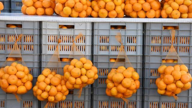 Prodavači mandarina iz doline Neretve stigli u Šibenik