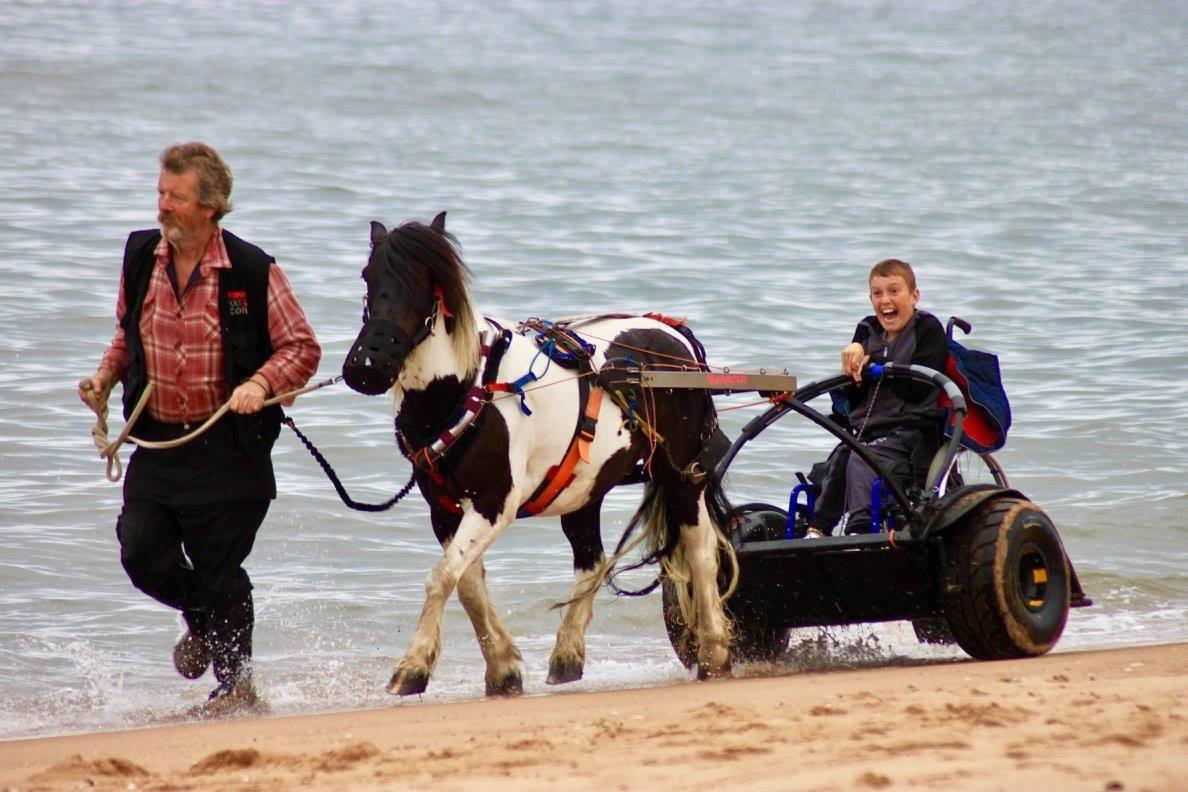 Poni pomaže nepokretnima: Prevozi ih u njihovim kolicima