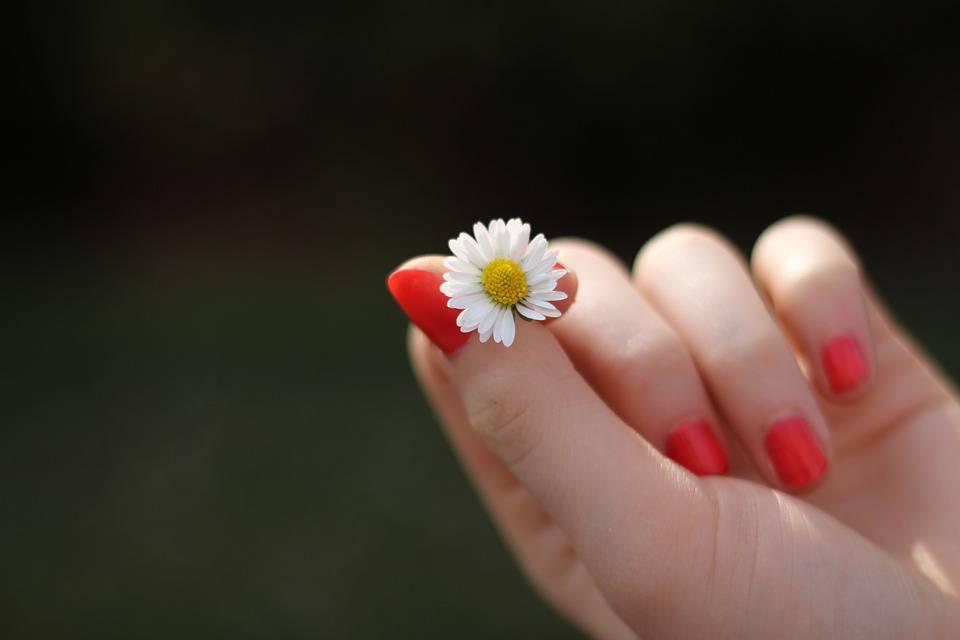 Daisy Hand Lacquered Fingernails Finger Flower
