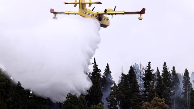 Rogotin: Požar u borovoj šumi na napristupačnom terenu