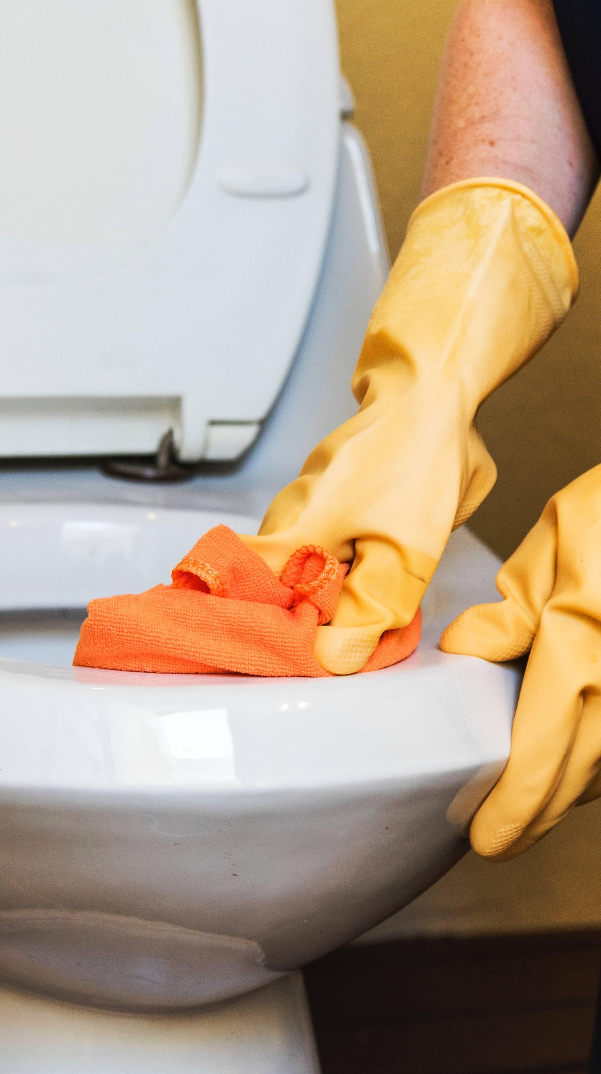 Kad se i od pranja WC školjke radi nauka, shvatiš da si sretan