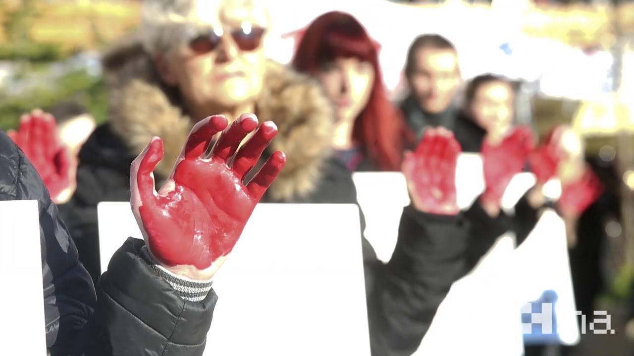 Prijatelji životinja na Adventu: 'One nisu hodajuće kobasice'