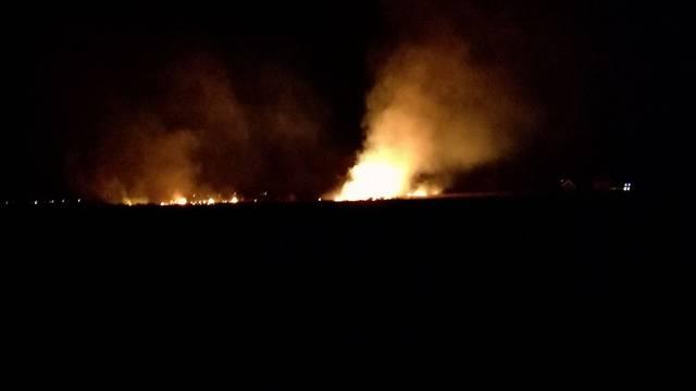Ljudi palili korov: Vatrogasci diljem zemlje imali intervencije