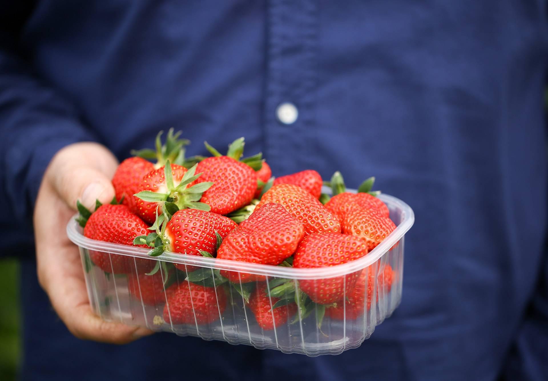 Top savjeti kako izabrati dobre jagode na tržnici ili u trgovini