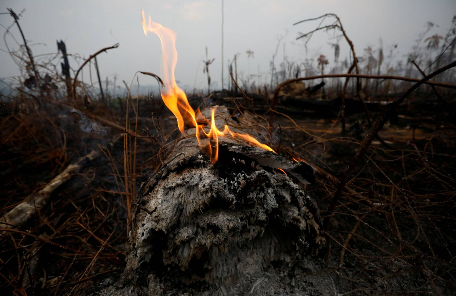 FILE PHOTO: A tract of Amazon jungle is seen after a fire in Boca do Acre
