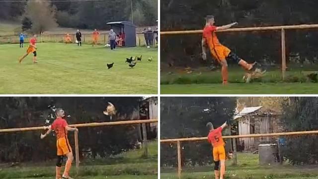 Presudio kokoši u žaru borbe: 'Žao mi je, kupio sam im novu'