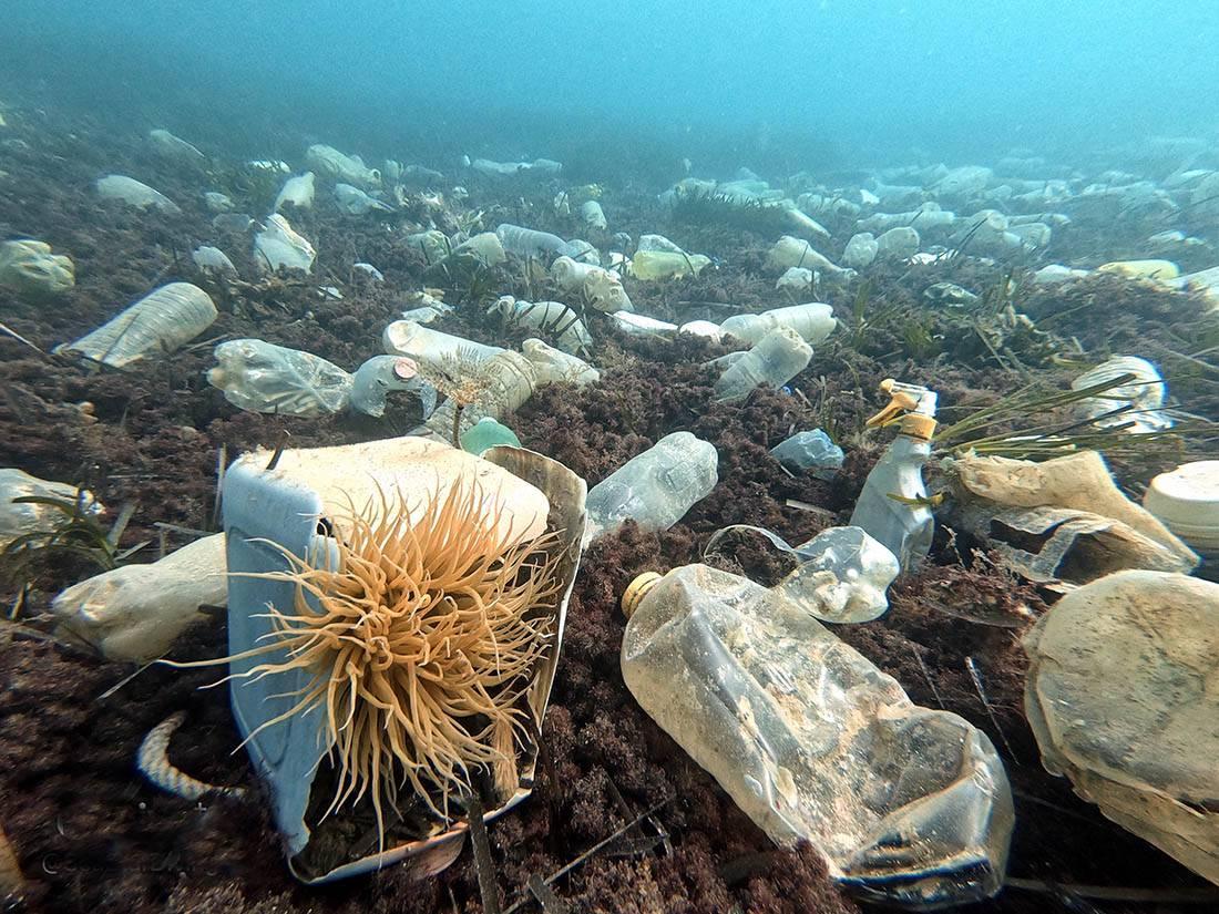 Slike koje će vas zgroziti: Dno mora na krajnjem jugu Hrvatske prepuno je plastičnog otpada