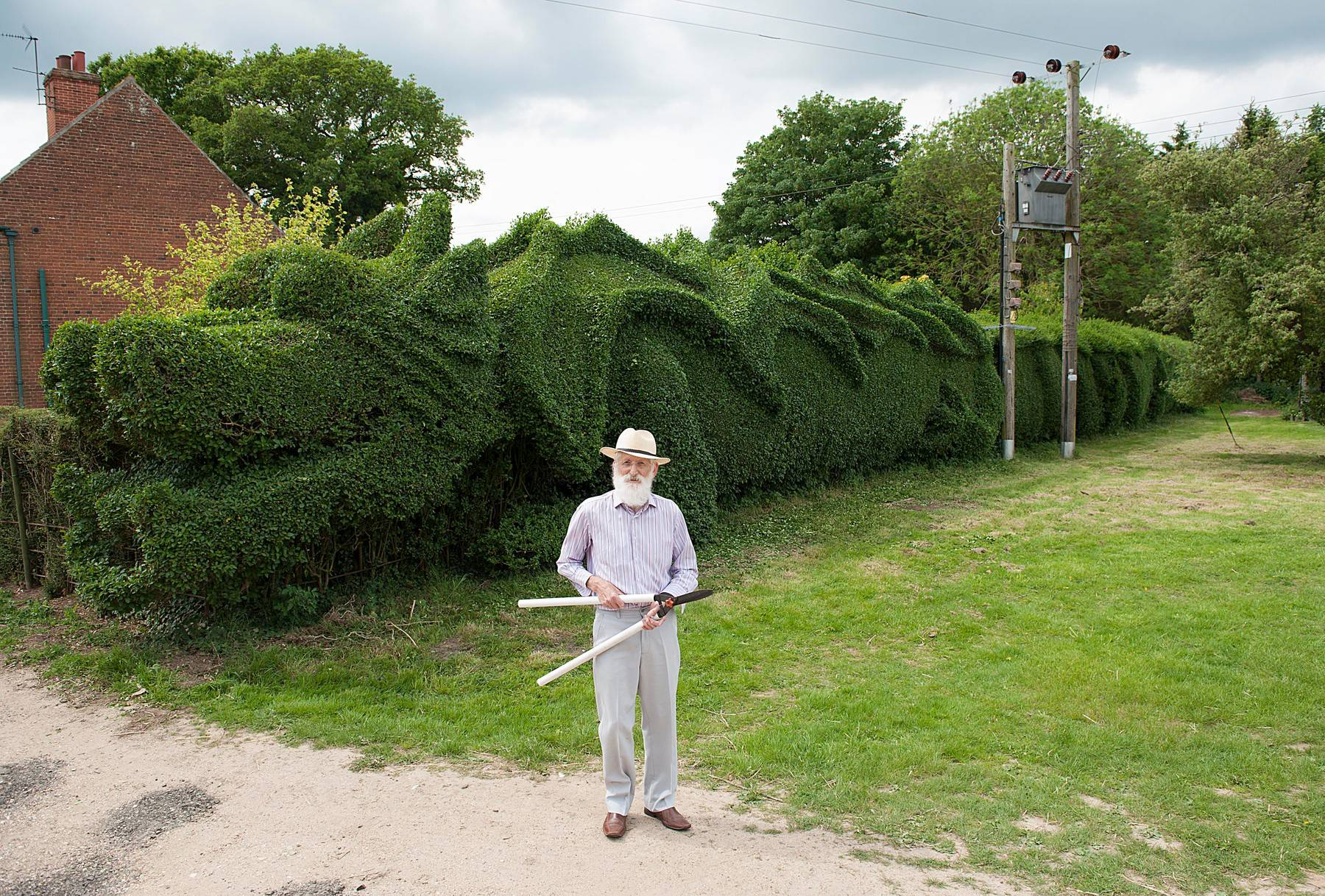Clipping This Hedge Is A Monster Job