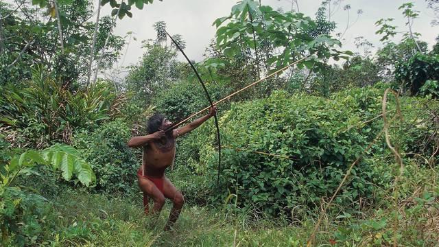 Venezuela Guayana Amazonas, near Rio Siapa. Indio Yanomami tribe Cavaroa hunting in forest. man in a