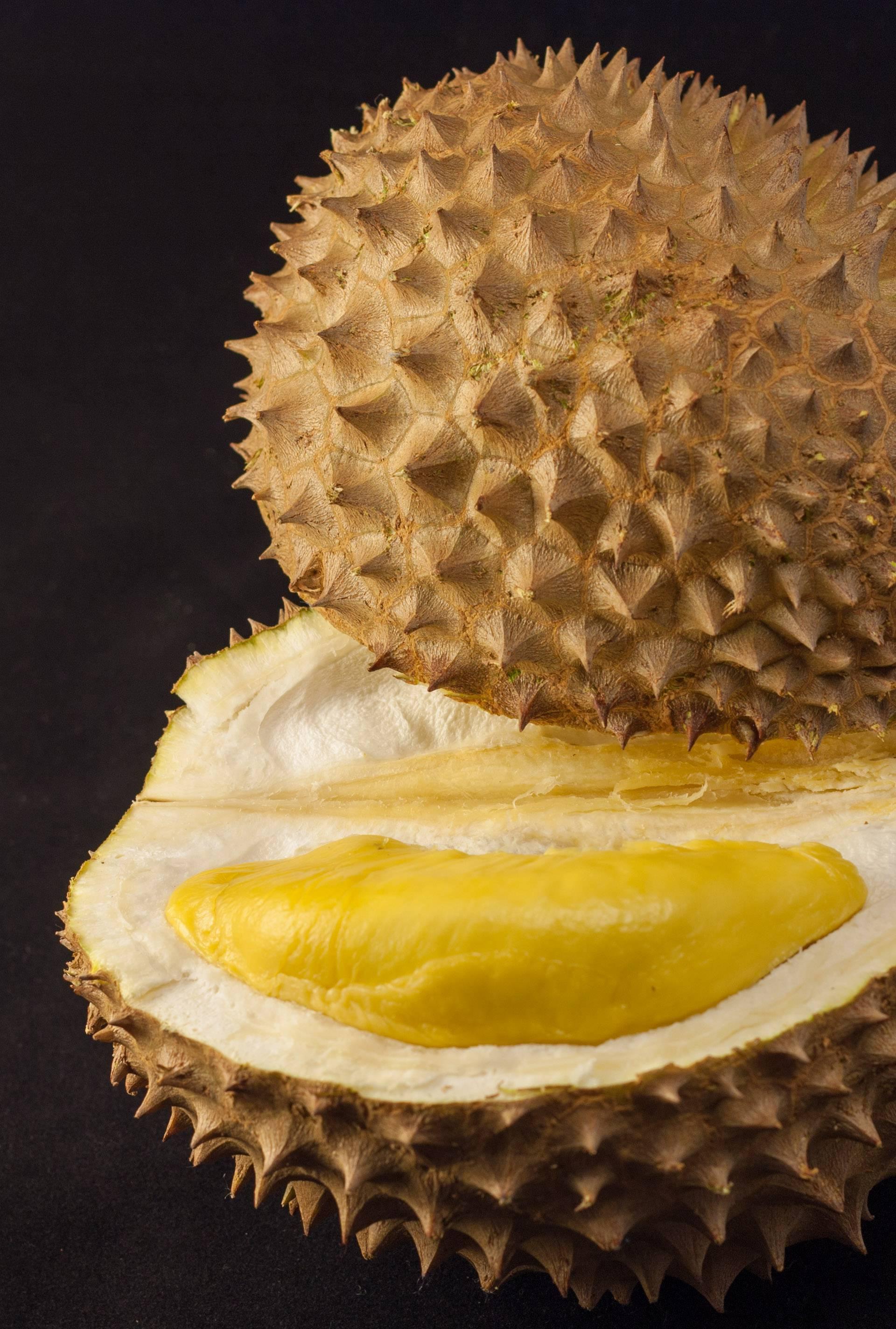 Azijsko voće durian