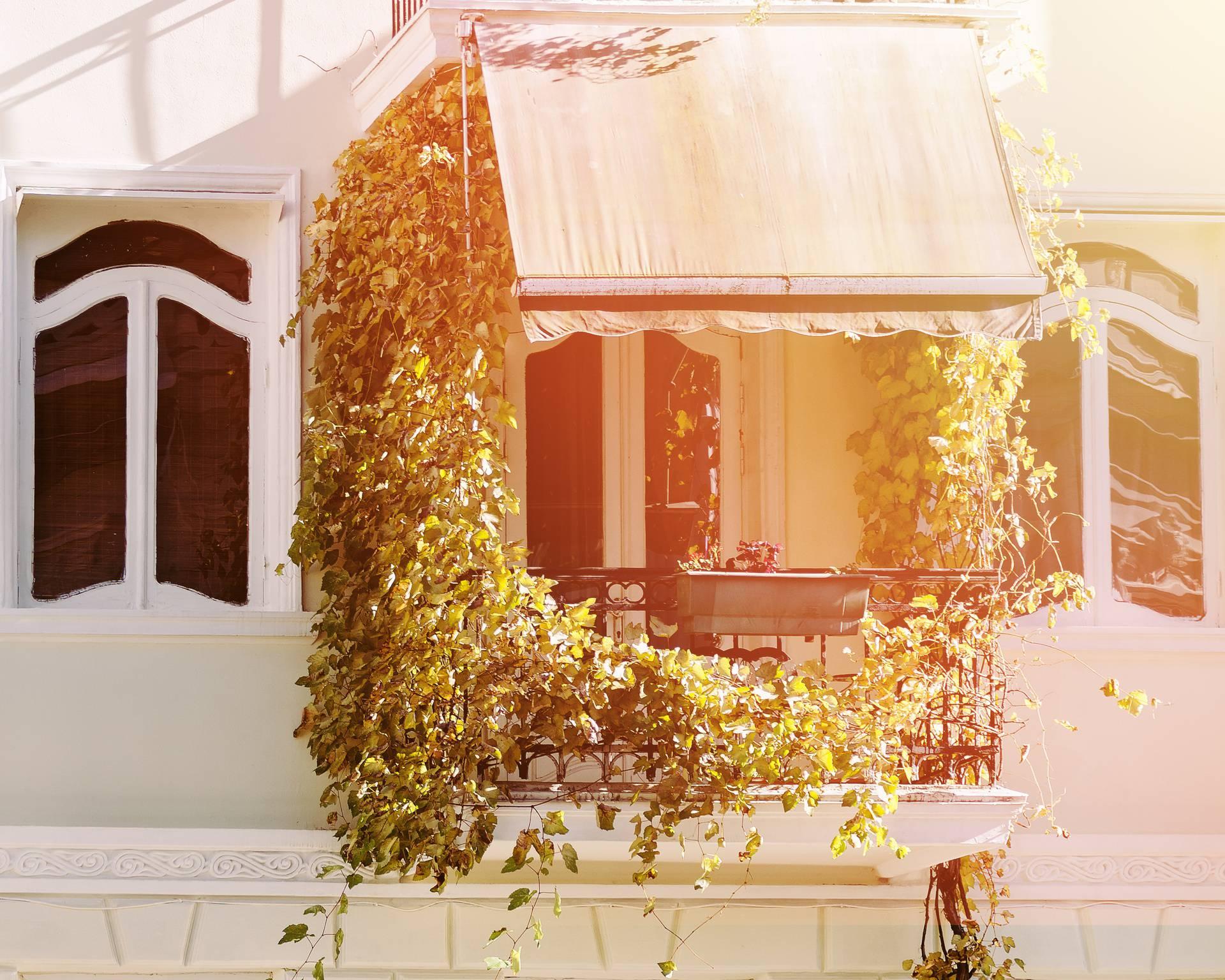 Do nužnog hlada na balkonu na 19 načina - od zavjesa do biljaka
