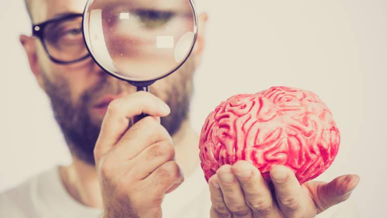 Pet tipova mozga: Otkrijte koji je vaš i kako to utječe na vas?