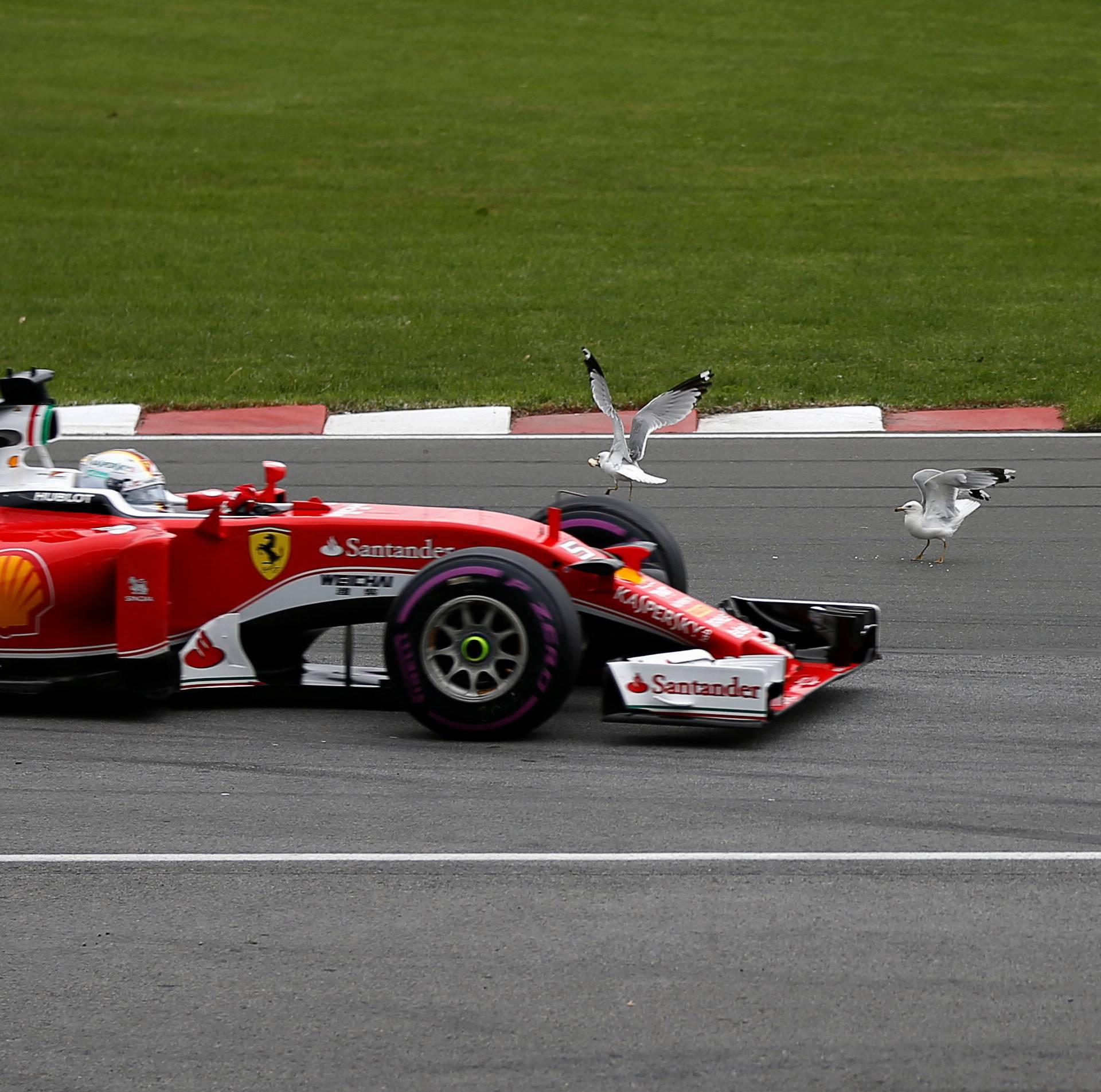 Formula One - Canadian Grand Prix
