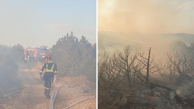 Čiovo: Izgorjelo 5000 kvadrata borove šume i niskog raslinja