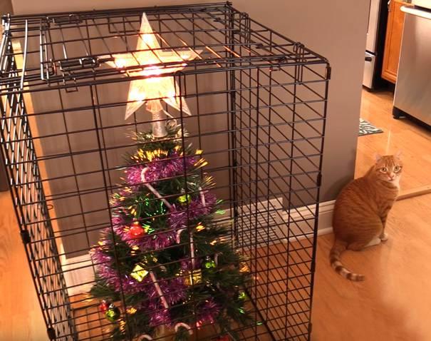 Božić i kućni ljubimci: Genijalni načini kako zaštititi dekoracije