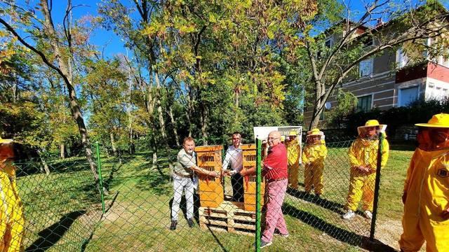 Poreč ima prvi urbani pčelinjak