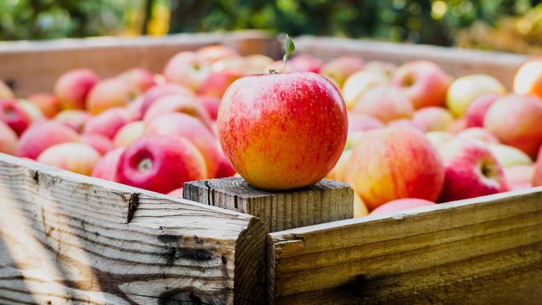 Jedite jabuke - lakše mršavite, spriječite zubni karijes, išijas...