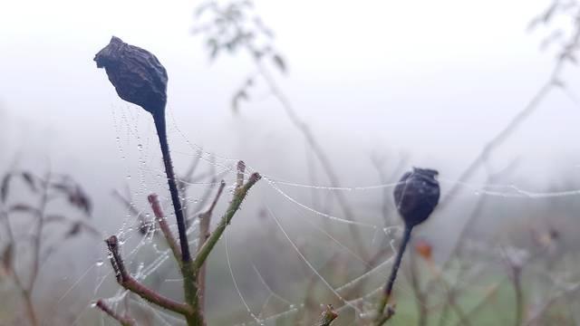 Hladno i maglovito jesensko jutro probudilo je Zagrepčane