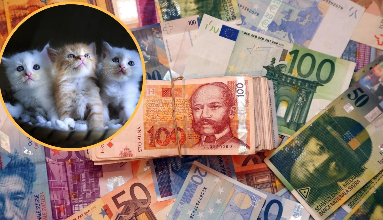 Đurđevcu je ostavila 30 tisuća dolara, a mačkama tri milijuna!