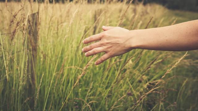 Meditativna šetnja više je od fizičke aktivnosti: Donijet će vam smirenost, snagu i radost