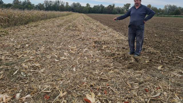 Sam pronašao lopova koji mu je ukrao četiri tone kukuruza