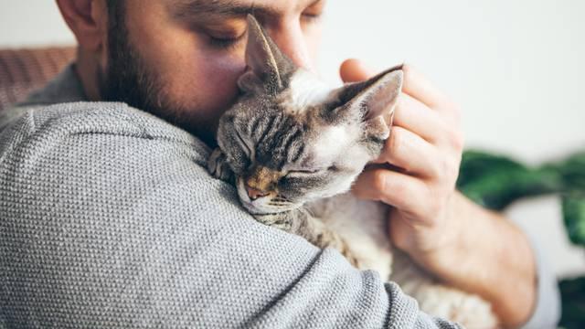 Veterinar: 2 najbolja načina za držati mačke - one ih obožavaju