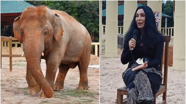 Cher se zalagala za prava slona: 'Više neće živjeti kao zatočenik'
