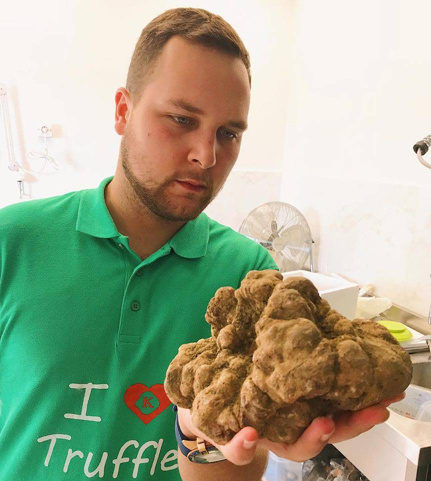 Gigantski tartuf: Ubrao gljivu kapitalca vrijednu 22.500 kuna