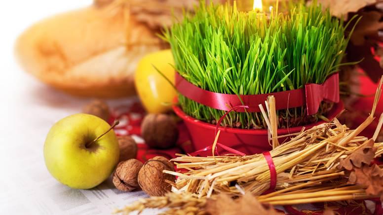 Pšenicu prije klijanja prekrijte folijom kako bi zadržala vlagu