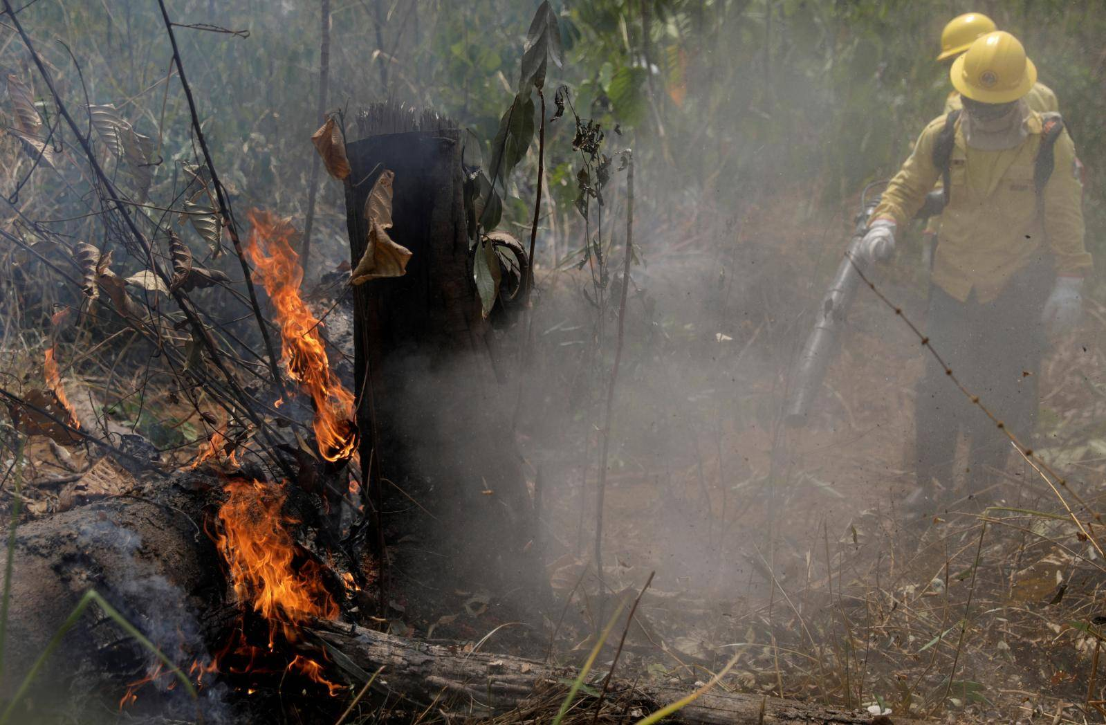Firefighters extinguish a fire in Amazon jungle in Porto Velho
