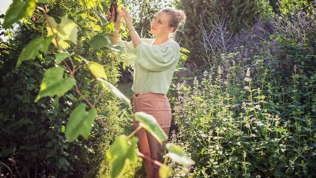 Orezujte poput profesionalnih vrtlara