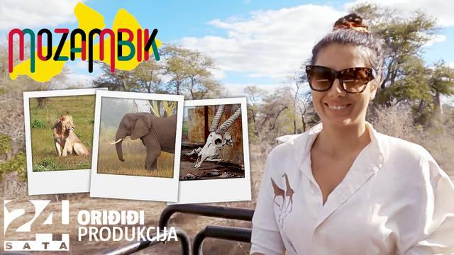 Dušan Bućan i Sara Hdagha u safariju: Skoro nas je napao lav