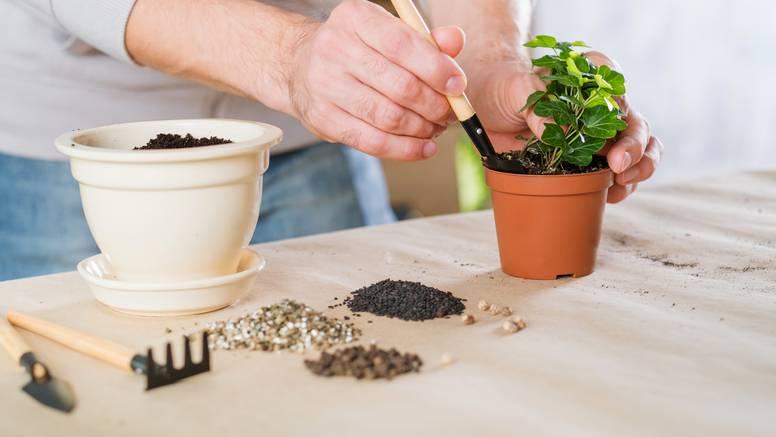 Napravite kućni vrt za bilje u par koraka i sa super alatima