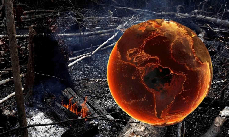 Planet nam umire! Vatra guta pluća svijeta, nitko je ne gasi