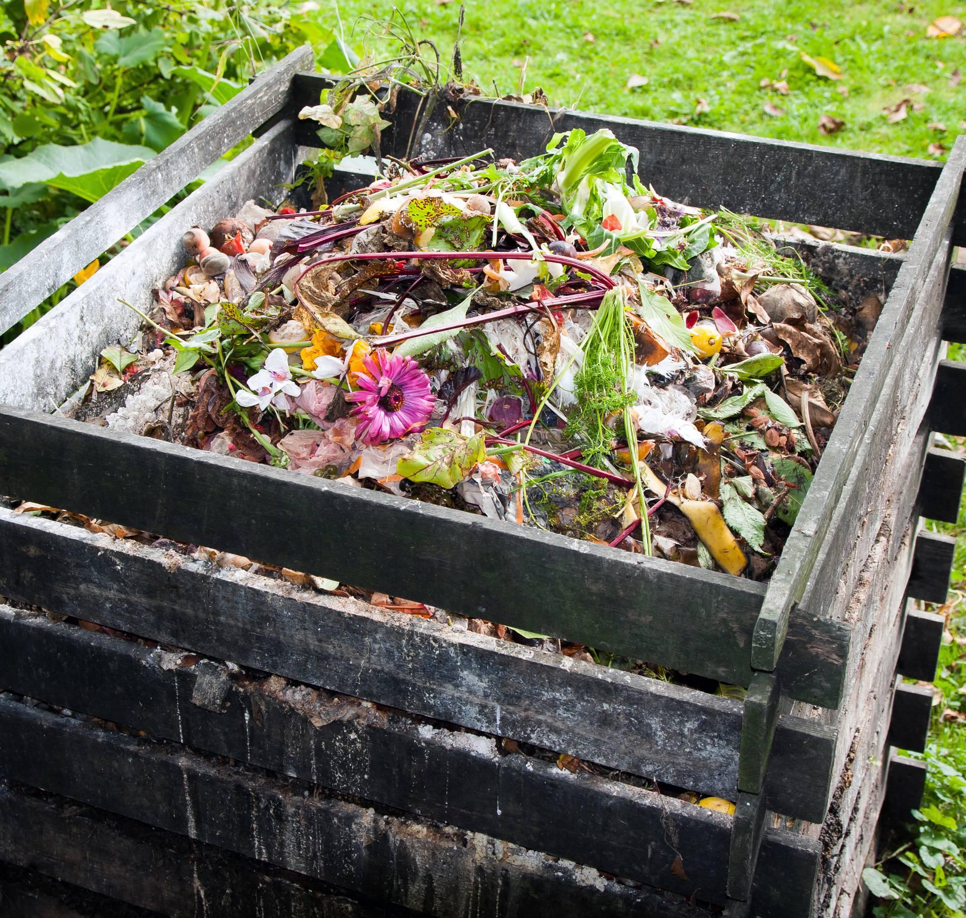 Top savjeti stručnjaka kako napraviti savršeni kompost: Za plodonosan vrt i zdrave biljke