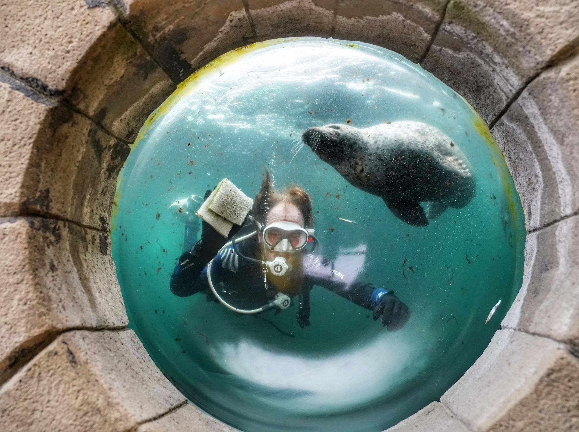 Otvara se Tynemouth akvarij
