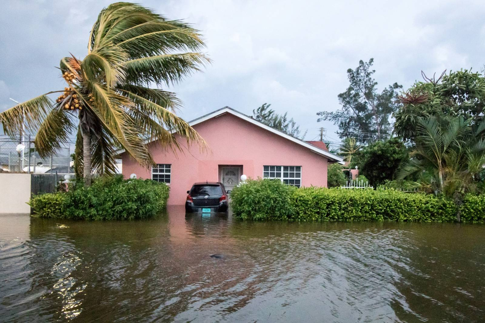 A palm tree bends in the wind next to a flooded street after the effects of Hurricane Dorian arrived in Nassau