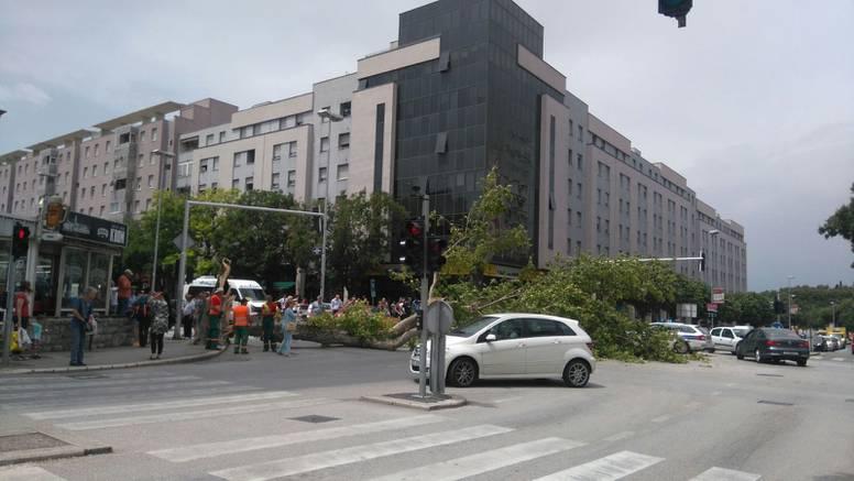 Olujno jugo usred Splita srušilo veliko deblo na policijsko vozilo