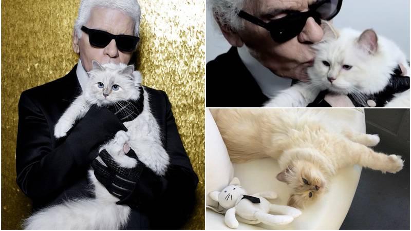 Lagerfeld je bogatstvo ostavio manekenima, vozaču i mački