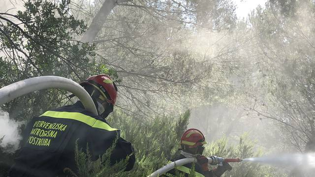 Svatko može pomoći u borbi protiv požara