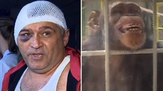 Majmun napao čuvara