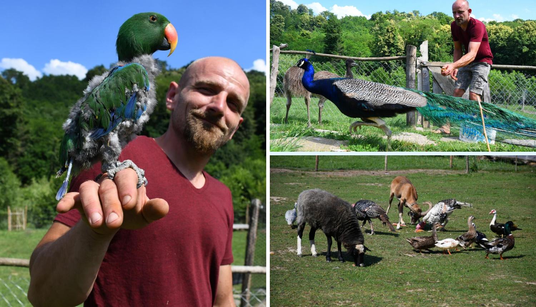 'Na imanju živim s 360 životinja i liječim ih. Ovo je za mene sve'