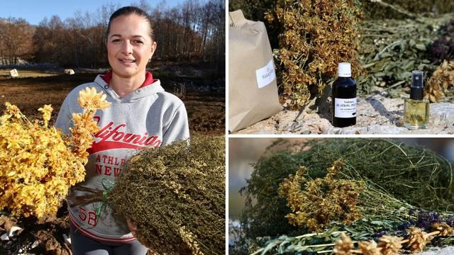 Hercegovački slatki pelin: Ove godine ga svi žele da se zaštite od virusa - gotovo da ga nema