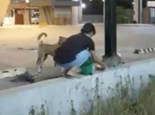 Maureen unatoč zabrani izlazi iz stana da nahrani pse lutalice
