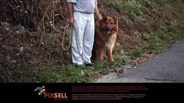 Nel Pavletić/Pixsell