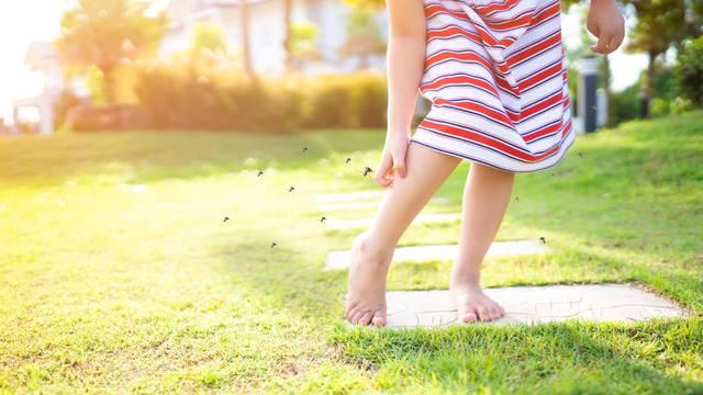 3 vrlo jednostavna koraka koji pomažu kod uboda komarca