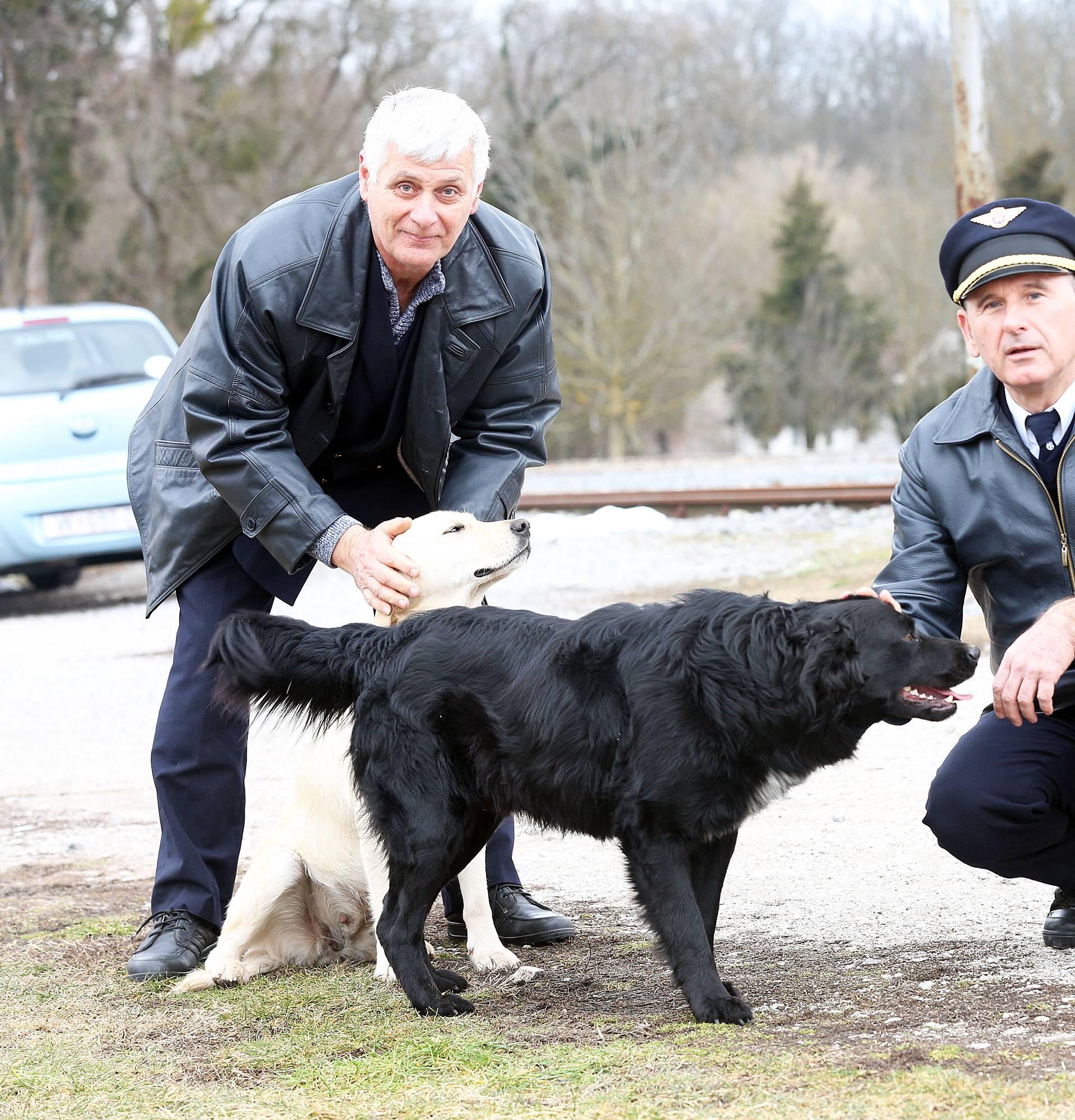 Kraljevi pruge: Psi lutalice u Spačvi čekaju svoj novi dom
