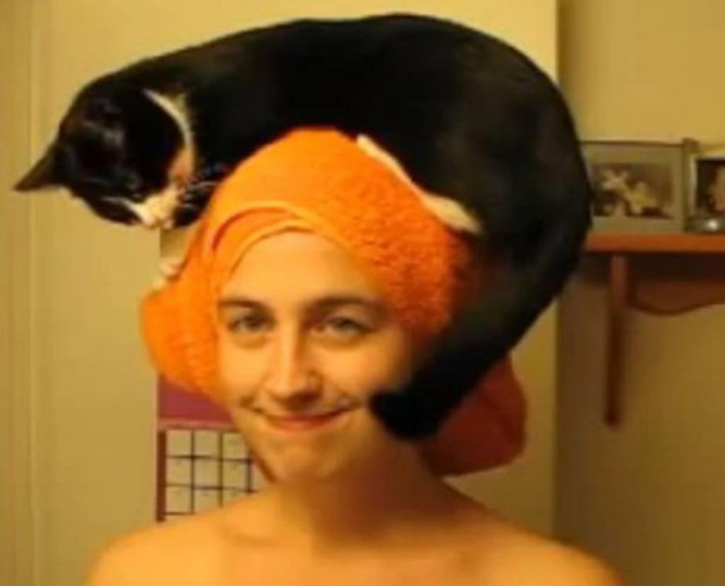 Perete li i vi zube s mačkom na glavi? Njoj je to rutina