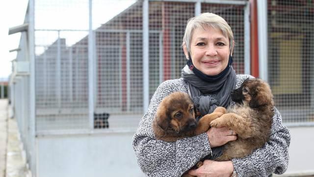 Došla iz Venezuele da spašava pse u Hrvatskoj: 'Moj san je da otvorim svoj hotel za pse'